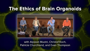 The Ethics of Brain Organoids with Alysson Muotri, Christof Koch, Patricia Churchland, and Evan Thompson