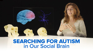 Searching for Autism in our Social Brain